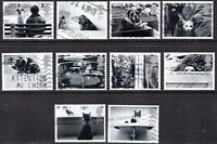 2001 Sg 2187/96 Cats & Dogs Fine Used Set of 10