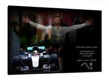 Lewis Hamilton 2016 MONACO 30x20 pollici tela MERCEDES Foto Incorniciata f1 Print