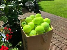 15 Used Tennis Balls For Dogs All in Good Condition Sanitised and Pet Friendly