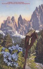 Alpenblumen: Enzian-Gentiana, Enzian ngl F9149