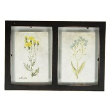 Sass & Belle RUSTIC DOUBLE FLOATING WALL PHOTO FRAME BLACK Shabby Chic Bohemian