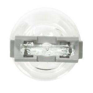 Wagner Lighting BP3156LL Turn Signal Light Bulb