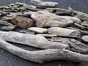 BEAUTIFUL ASSORTED DRIFTWOOD PIECES ARTS CRAFTS SEA RUSTIC DECOR SLICES CARDS