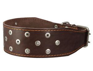 """Genuine Leather Dog Collar 3"""" wide 23.5""""-27"""" neck Mastiff, Cane Corso"""