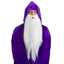 Long White Beard Wizard Adults Magician Fancy Dress Costume Accessory