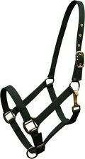 Hunter Green Triple Ply Nylon Western Horse Halter w/ Brass Hardware! New Tack!