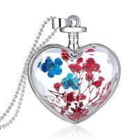Women Glass Bottle Heart Dried Red Blue Flower Pendant Necklace Silver Chain