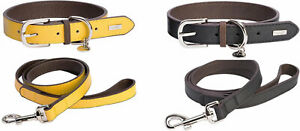 DO&G Leather Collar & Lead Collection