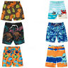 Gymboree Baby Toddler Boy Swim Trunks 3 6 12 18 24 2T 3T 4T NWT