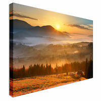 Sunrise over Forest Canvas Wall Art Picture Print