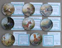 ROYAL DOULTON - ROLLINSON'S PORTRAITS OF NATURE - SET OF 8 PLATES - LTD EDITION