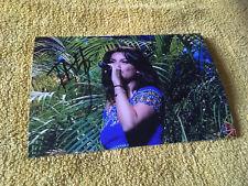 Tal Photo Dedicace Autograph Singer Chanteuse