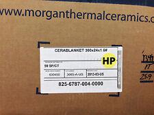 """Ceramic Fiber Blanket  2400   1"""" x 24"""" x 25' 6# Dens"""