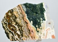 550ct 103mm Rare Ocean Jasper Slab Orbicular Orbs Crystal Madagascar -OLD STOCK!