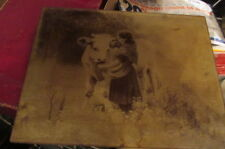 Vintage Print Circa 1900 Era Under Glass Girl In Shawl Sanding with Cow