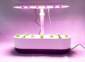 Hydroponic growing system with 10 plant sites, Indoor Growing Garden.