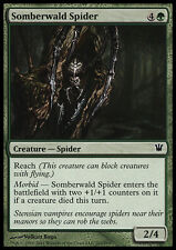 MTG 4x SOMBERWALD SPIDER - RAGNO DI SOMBERWALD - ISD - MAGIC