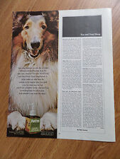 1967 Pet'm Coat & Skin Daily Food Supplement Ad Collie Dog