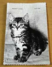 1960s Vintage Retro Post Card 'Bright Eyes' Cute Cat Kitten postcard