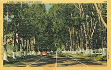 Linen Postcard CA G513 Cancel 1941 A Picturesque California Highway Old Car Tree
