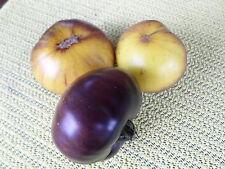 """TOMATE """"Antho"""" weiße Tomate mit lila Streifen, ein Geschmackserlebnis,"""