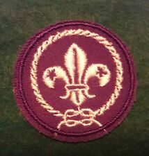 "WORLD SCOUTING - POCKET BADGE- 1"" (gauze back)"