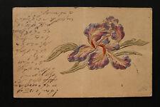 Präge Litho AK Orchidee 1904 Blüte Blume Orchideen Botanik Pflanzen