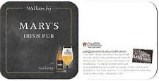brij vanderghinste *OMER recto-verso*Mary's Irish pub