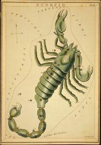 10 Print Star Sign Astronomy Astrology Poster Set Leo Scorpio Aries Gemini Libra