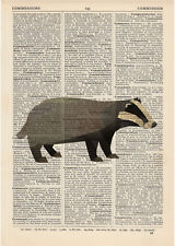 Badger Geometric Dictionary Art Print Vintage Page Minimalist polygonal Colouful