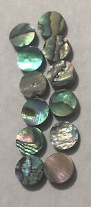 12 pcs new zealand abalone Luthier Dots Inlay 6mm Fret Marker for Guitar