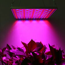 Newest Red Blue 45w Led Grow Light Indoor Garden Hydroponics System Plants bloom