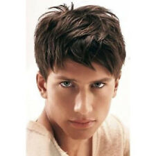 Masculine Short Toupee Fluffy Natural Straight Wig For Men
