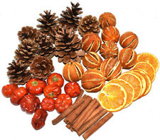 50 assorted piece christmas cinnamon orange cones pumpkins slices whole kit