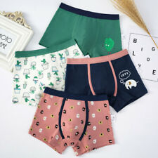 2 Pack Kids Underwear Boys Cartoon Boyshort Cotton Boxers Briefs Children 2-16Y