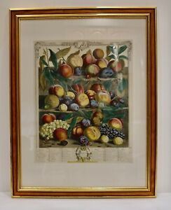 Vintage Robert Furber Print Fruits of August 1732 from Colonial Williamsburg Fnd