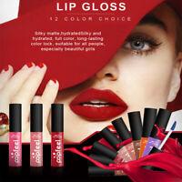 24 Hours Long Lasting Velvet Matte Lip Gloss Liquid Lipstick Lip Tint Lip Glaze