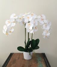 New Artificial Fake Silk Flower White Phalaenopsis Orchid w Ceramic Pot 58cm H