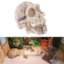 1pc Aquarium Decorative Resin Skull Crawler Dragon Lizards Decoration XWD