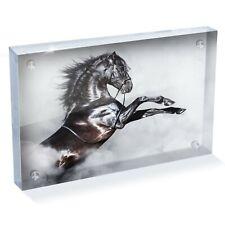 "Black Stallion Horse Spanish Photo Block 6 x 4"" - Desk Art Office Gift #12491"