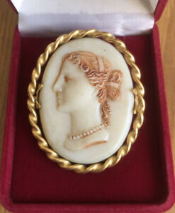 Vintage Jewellery Celluloid Plastic Cameo Brooch With Gold Tone Metal Base
