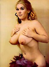 VINTAGE NUDE SUZANNE PRITCHARD BIG BREASTS 8.5 X 11 GLOSSY QUALITY GUARANTEED!!