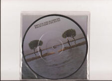 "Bruce Dickinson - Back from The Edge ( 7"" - Picture Disc - EX )"