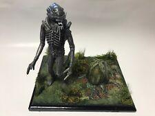 Alien Diorama