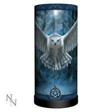 Awaken Your Magic - Fantasy Gothic Owl Table Lamp by Anne Stokes 27.5cm