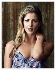"""--ARROW--""""Felicity"""" EMILY BETT RICKARDS --Glossy 8x10 Photo - (f)"""