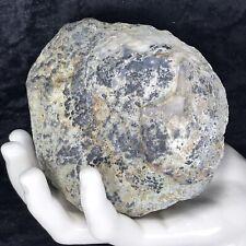 New Listing4-1/2� Large Unopened Geode Crystal Rattler Whole Quartz Break Your Own 1.12Lb