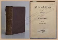 Schwabe Bilder & Klänge aus Rudolstadt In Volksmundart 1869 Gedichte Geschichte
