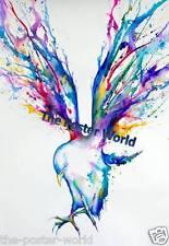 Imagen De Pájaro Paloma Silvestre Acuarela Aquiles Imagen Cartel Pared Arte Impresión Nuevo
