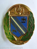 Insigne 31° GROUPEMENT  DE CAMP ARMEE FRANCAISE  ORIGINAL 1